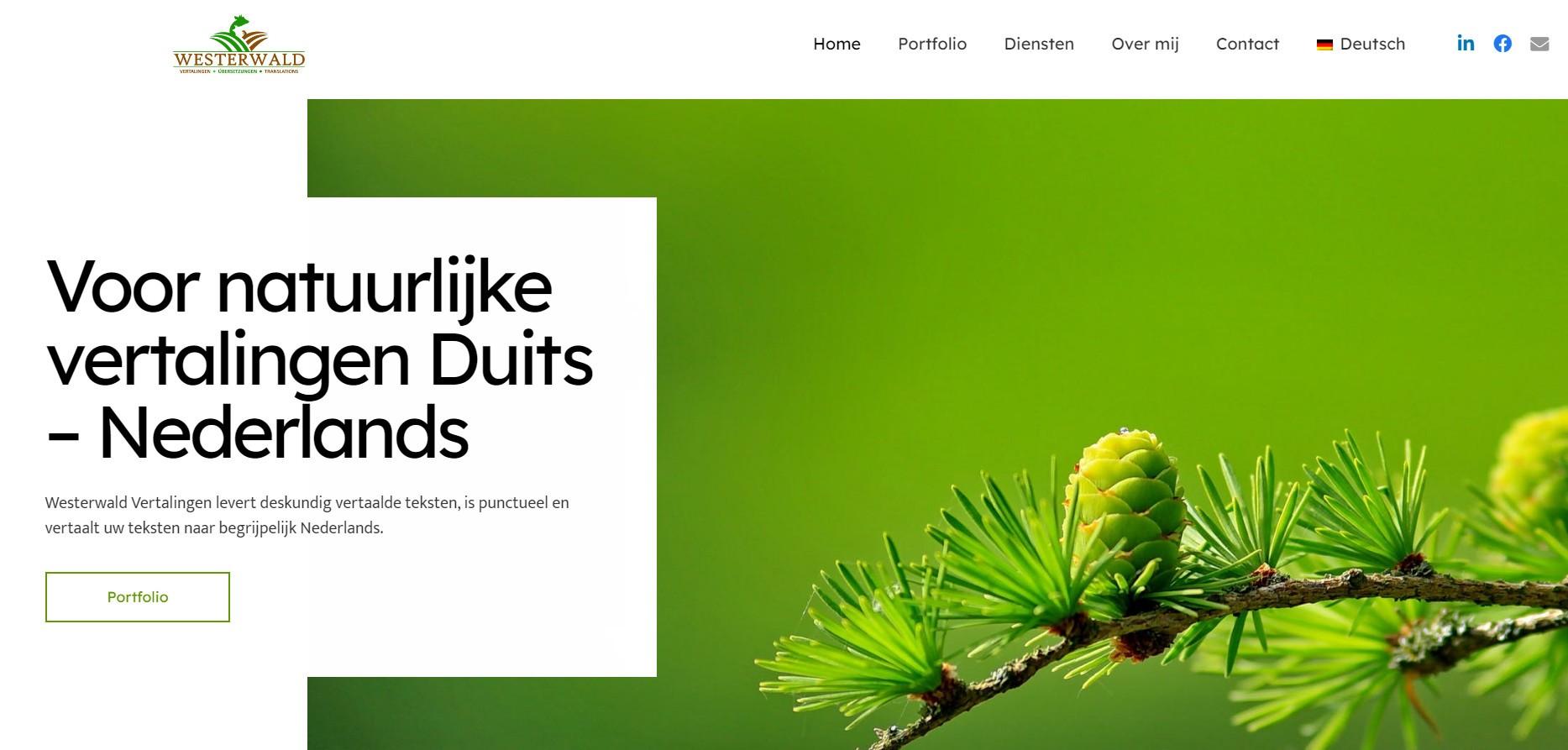 BeeWebdesign portfolio - Westerwald Vertalingen